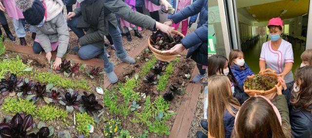 Raccolta e consegna degli ortaggi invernali piantati dai bambini della Martin Luther King